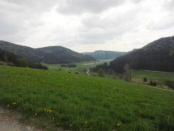 reichenbach am heuberg