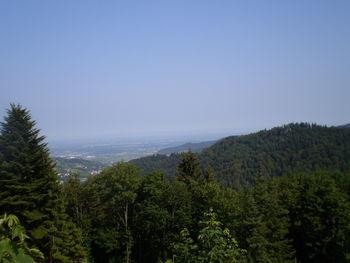 Westanfahrt: Blick in die Rheinebene von neben dem Haus Wiedenfelsen aus.