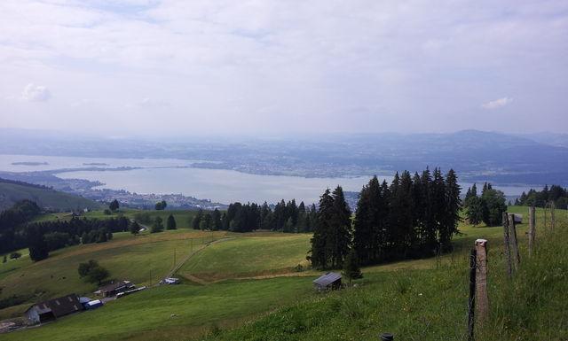 Blick auf Zürichsee und Seedamm