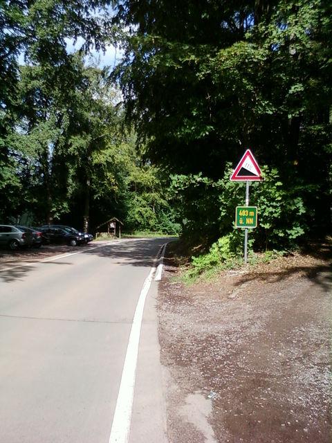 Gipfel Drei Buchen Abfahrt Richtung Ramberg.