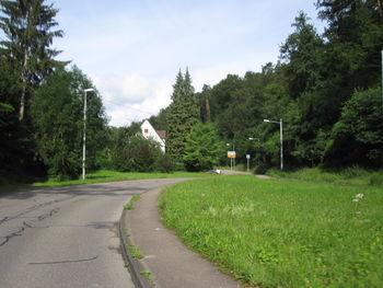 Raus aus der Stadt – der Anstieg nach Dachswald.