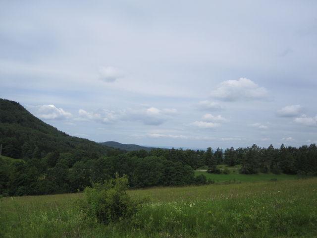 Blick ins Albvorland.