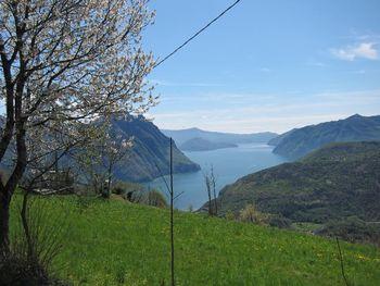 Bossico, Frühlingsstimmung mit Blick auf Lago d'Iseo.