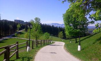 Abfahrt Richtung Schieferstaße vom Aussichtspunkt Weißen am Sattel (Auffahrt Nußbach West)