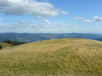 Blick vom Belchen auf die Alpen