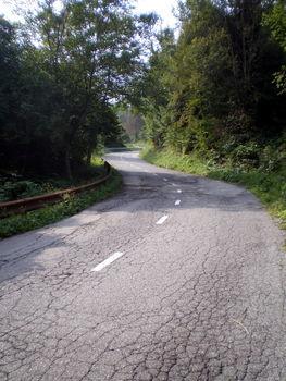 Eine Straße aus feinem Krokoleder ... .