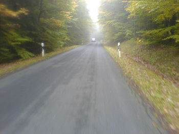 Die lange Gerade im Wald