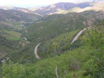 Abfahrt vom Coll de Banyuls nach Norden.