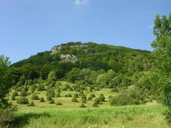 Blick vom unteren Teil der Steige. Typische Vegetation für die Schwäbische Alb ist die Wachholderheide unterhalb des Oberbergfelsens.