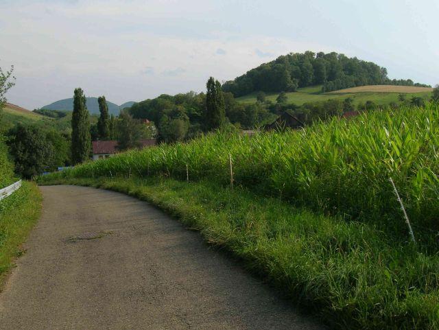 Blick von Norden auf des Käpfle (rechts). Links im Hintergrund Rossberg