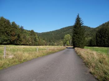 Im unteren Teil des Siebertales: hier geht es noch flach durch Wald & Wiesen