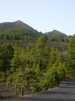Blick auf den Pico Birigoyo.