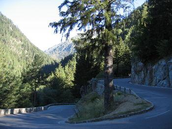 Ausgebaute Strasse unterhalb Le Boréon