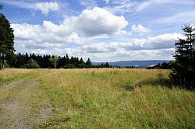 Schalke Plateau.