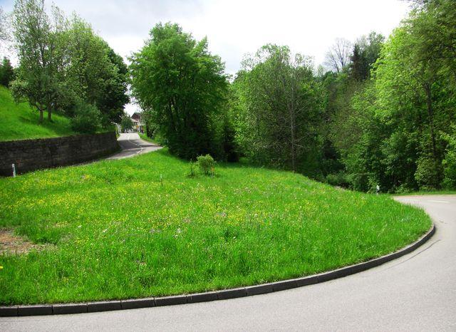 Die zweite Kehre kurz vor Bubsheim.