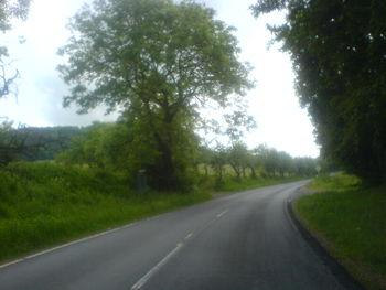 Aus Seiferts entlang des Birxgraben