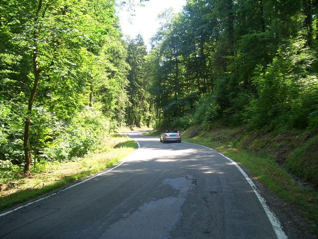 lockerer Anstieg im Wald __m[stb72|2140]