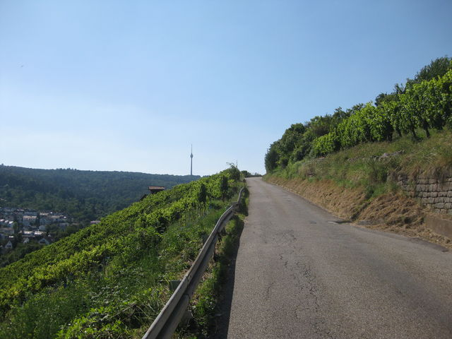 Die schmale Straße führt genau auf den Fernsehturm zu.