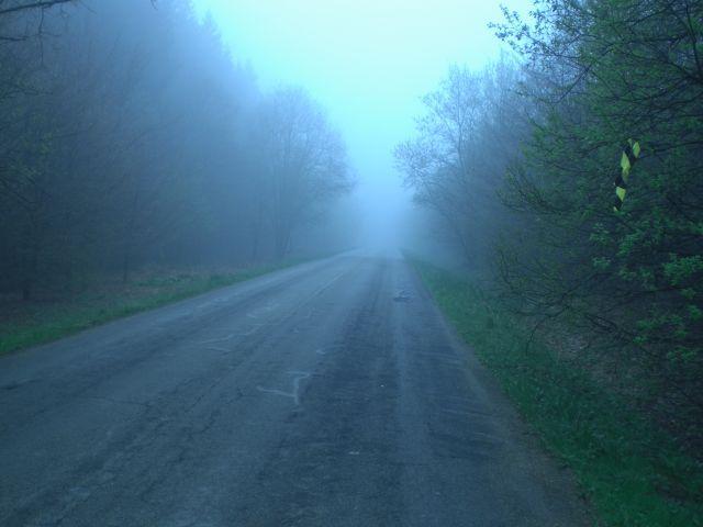 Man sieht, dass man nichts sieht, zumindest nicht viel am Col du Rosier am Rande des Hohen Venns.