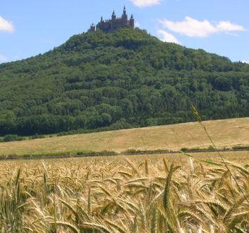 Bei Bisingen führt der Weg am Schloss Hohenzollern vorbei mit diesem Blick. Wer Lust hat, kann hochradeln.