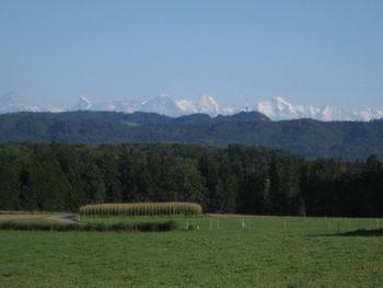 Der Sendeturm des Bantigers vor der Alpenkette, von Bangerten aus gesehen.