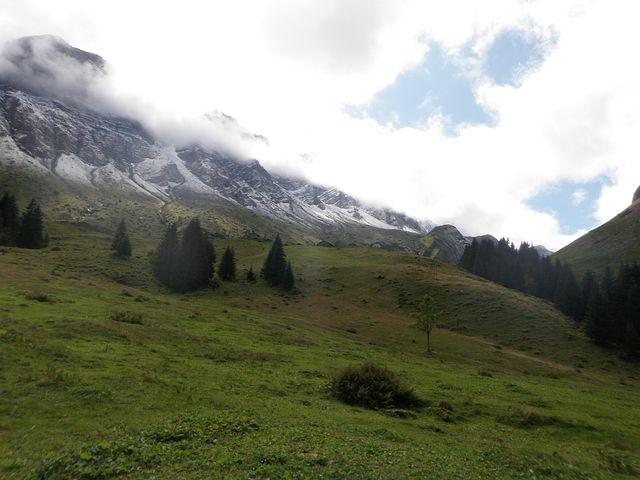 Die Alp von unten