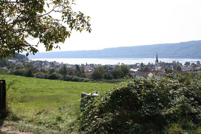 Blick auf Ludwigshafen und den Bodensee.