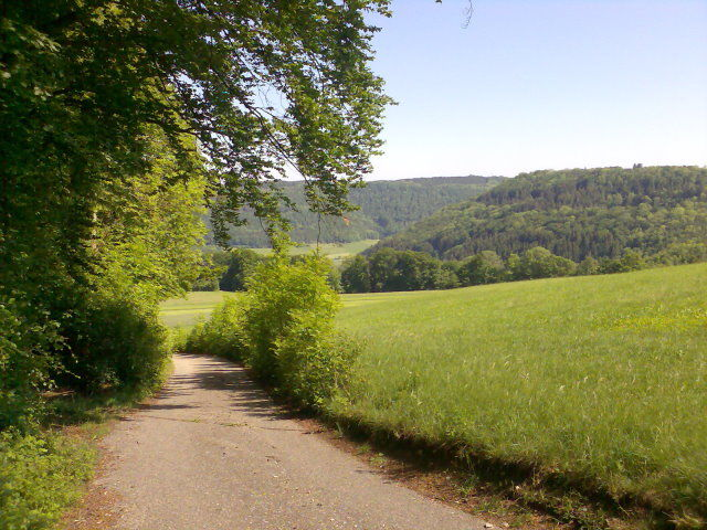 Ochsenbergsteige Blick über die Alb.
