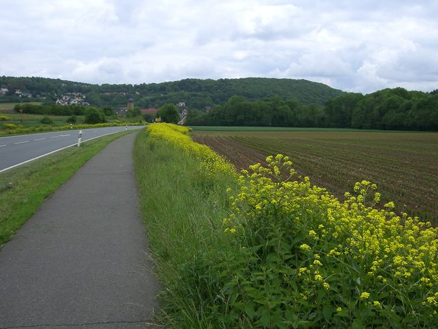 Der Sollenberg rechts bei Weißenohe.