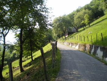 Nur hin und wieder führt die Straße über Bergwiesen...