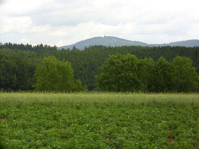 der Kindelsberg aus einiger Entfernung.