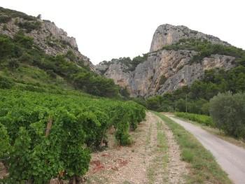 Col du Cayron, von Lafare fährt man direkt auf die Dentelles zu.