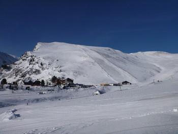 Falkert im Winter IV