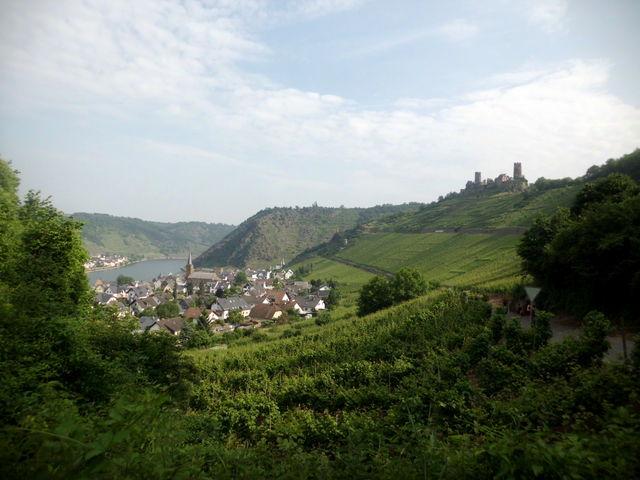 Hoch oben thront die Burg Thurant über Alken und dem vom Weinbergen gesäumten Moseltal