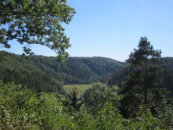 ... haben einen schönen Ausblick ins Neckartal.
