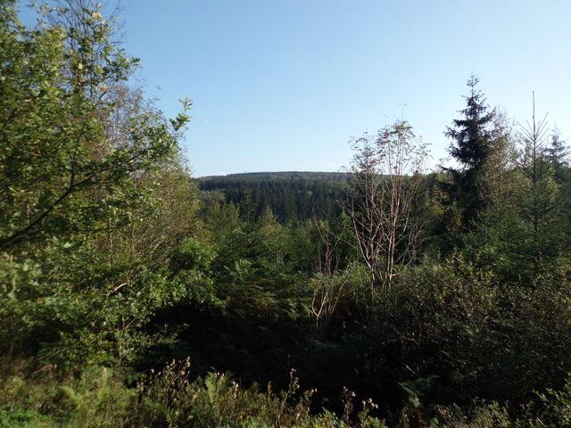 Ausblick Richtung Hertogenwald / Vennhochfläche hinter der Wesertalsperre