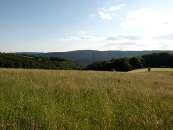 Odenwald pur!