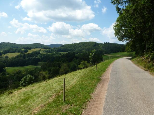 Hanglage mit freiem Südblick Richtung Jura