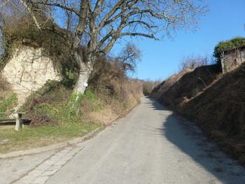 Westanfahrt zum Lenzenberg