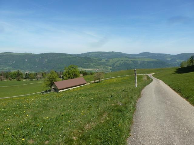 Die Schwengimatt nördlich der Passhöhe