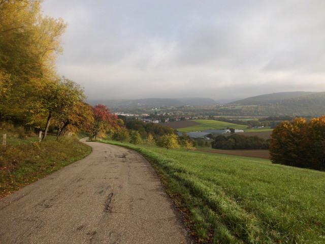 herrlicher Blick ins noch leicht im Morgennebel liegende Neckartal