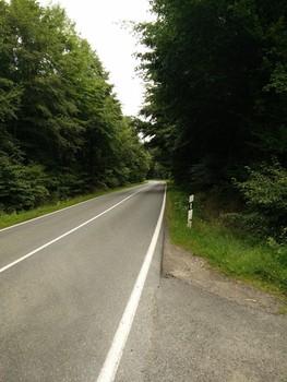 die letzten Meter der Auffahrt aus Gospenroda CC0 thelonious