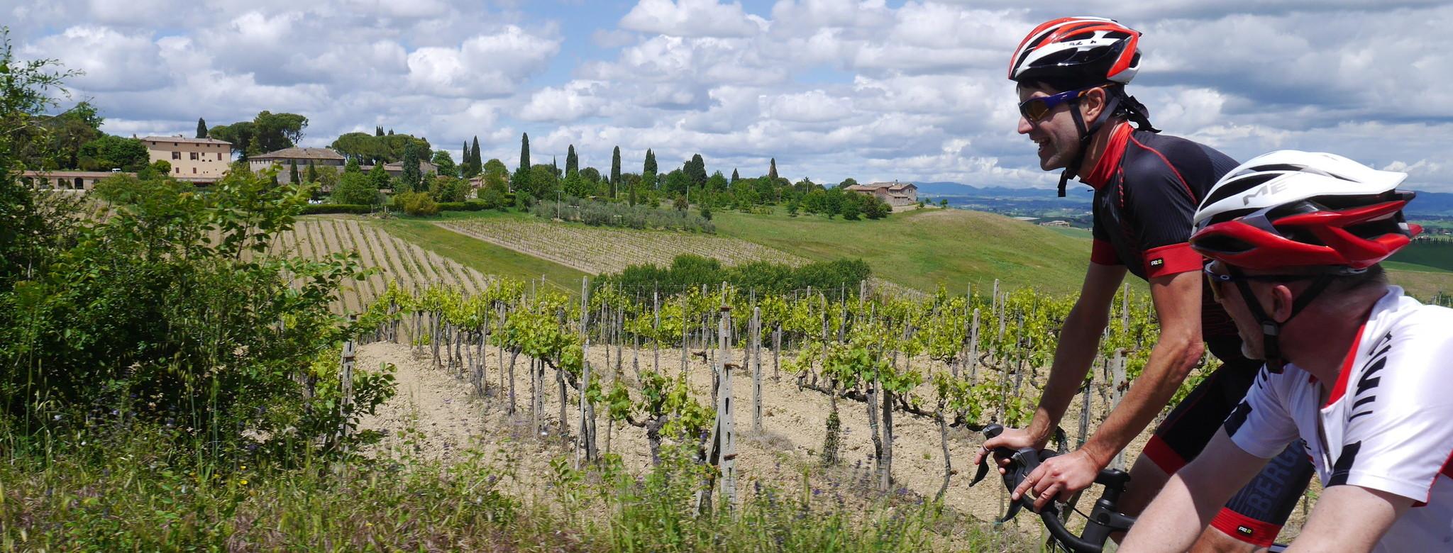 In den Weinbergen des Chianti...