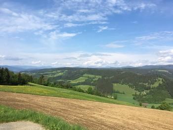 gunzenberg.