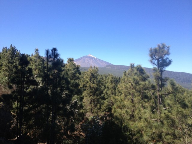 Bergtraining auf Teneriffa - vom  23. Februar bis 2. März 2019