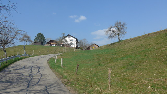 P1040866 Endenburg.