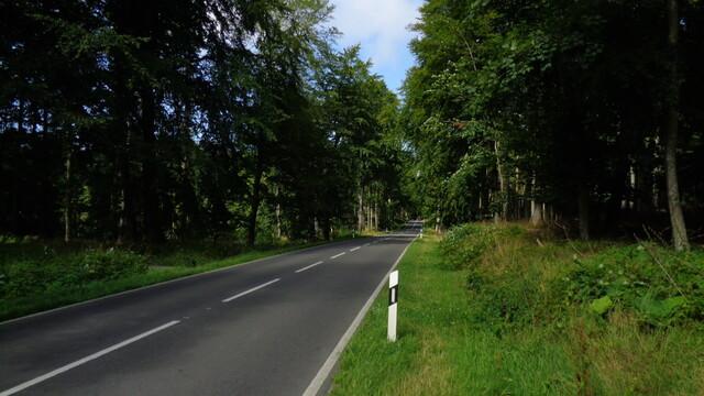 Richtung Hagensches  Baumhaus.
