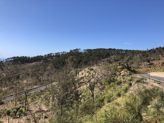Coll de sa Bastida Richtung Banyalbufar #1 W - Blick von der Passhöhe (IMG 2273).